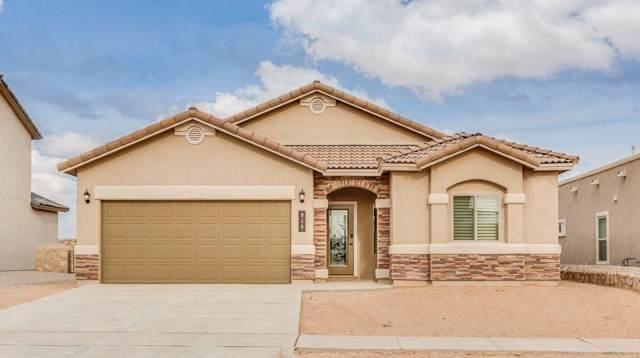 13908 Villa Vista Avenue, Horizon City, TX 79928 (MLS #819491) :: Preferred Closing Specialists