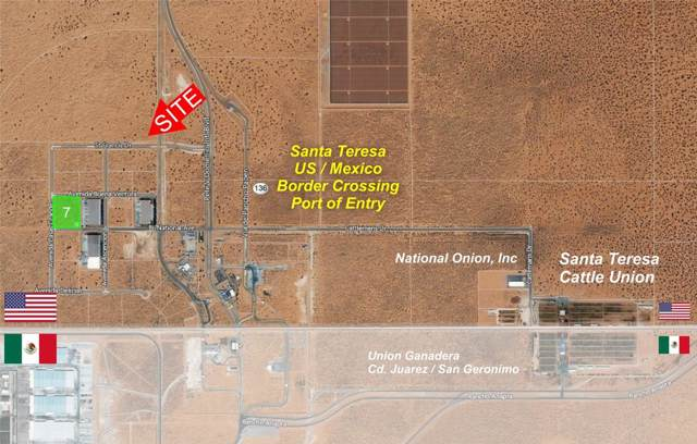 100 Avenida Buena Ventura, Santa Teresa, NM 88008 (MLS #819816) :: The Matt Rice Group
