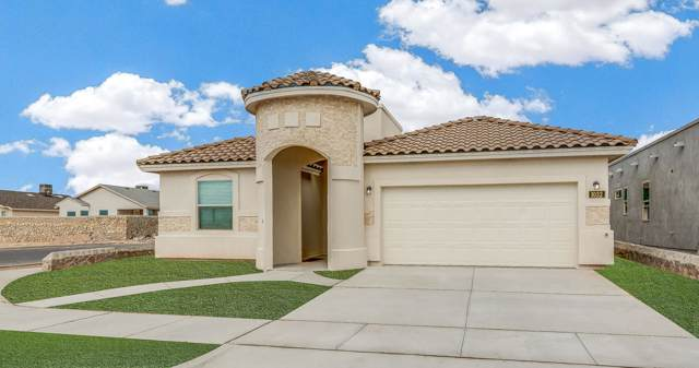 4552 Marisabel Azcarate, El Paso, TX 79936 (MLS #819941) :: The Purple House Real Estate Group
