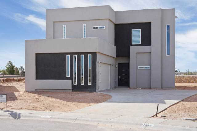 12313 Desert Dove Avenue, El Paso, TX 79938 (MLS #820357) :: Preferred Closing Specialists