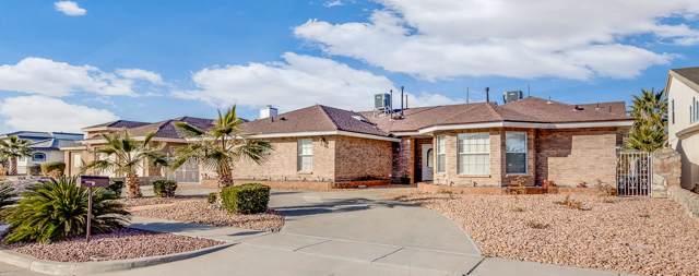 11329 Patricia Avenue, El Paso, TX 79936 (MLS #821094) :: Preferred Closing Specialists