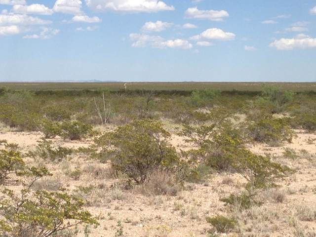 51 SEC 17 Sunset Ranches #, Sierra Blanca, TX 79851 (MLS #821121) :: Preferred Closing Specialists