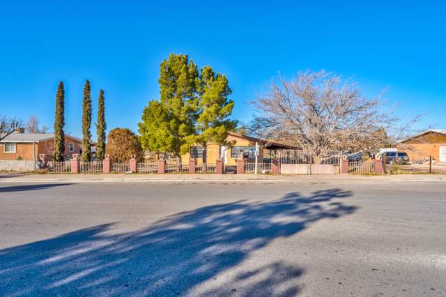 14891 Stacy Ann Drive, El Paso, TX 79938 (MLS #821199) :: The Purple House Real Estate Group