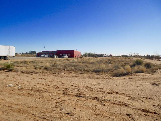14596 Jim Bridger Road, El Paso, TX 79938 (MLS #821342) :: The Purple House Real Estate Group