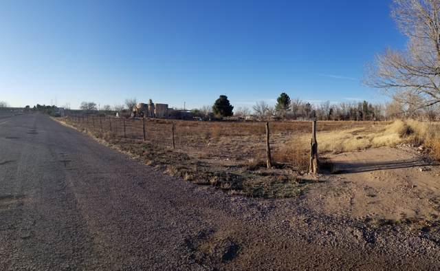 000 Gannet, Anthony, NM 88021 (MLS #821675) :: Preferred Closing Specialists