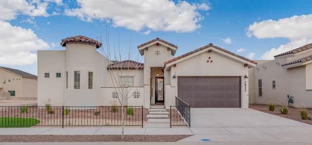 12316 Fresh Water Drive, El Paso, TX 79928 (MLS #821824) :: Preferred Closing Specialists