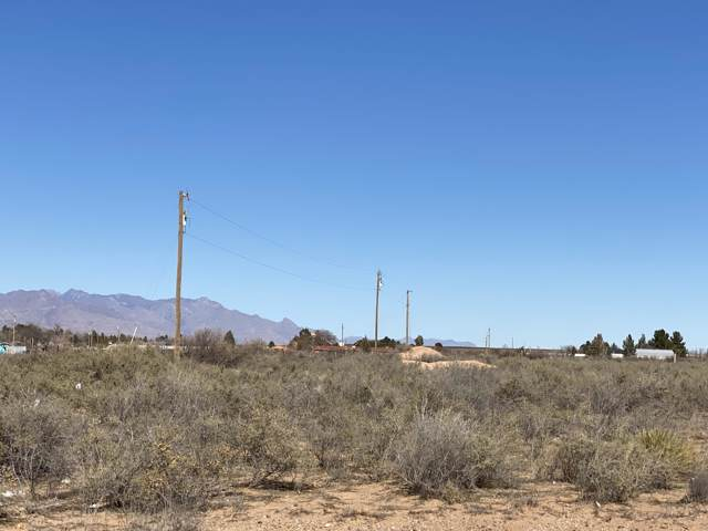 116 E Lisa Drive, Chaparral, NM 88081 (MLS #822119) :: Mario Ayala Real Estate Group