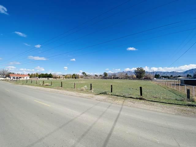 100 Lanell Drive, Canutillo, TX 79835 (MLS #822698) :: Preferred Closing Specialists