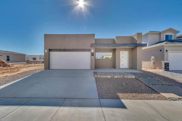 401 Beech Tree Drive, Horizon City, TX 79928 (MLS #822708) :: Preferred Closing Specialists