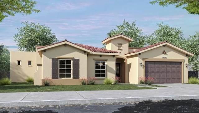 13686 Writtle Street, Horizon City, TX 79928 (MLS #822882) :: Preferred Closing Specialists