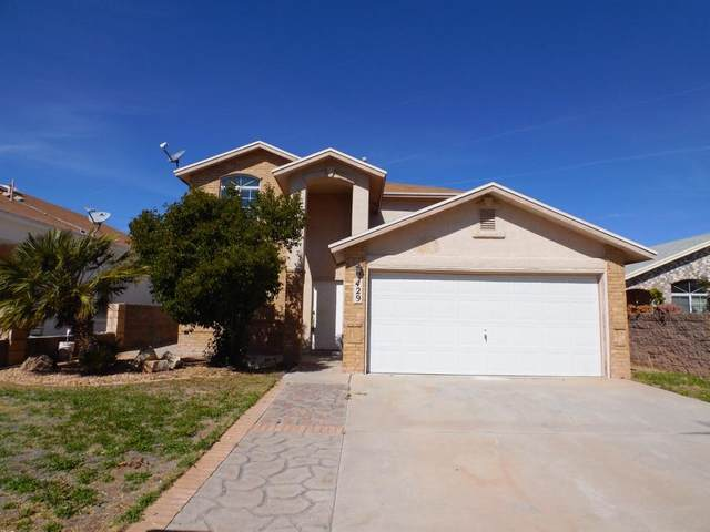 429 Valle Fertil Drive, Socorro, TX 79927 (MLS #823026) :: The Purple House Real Estate Group