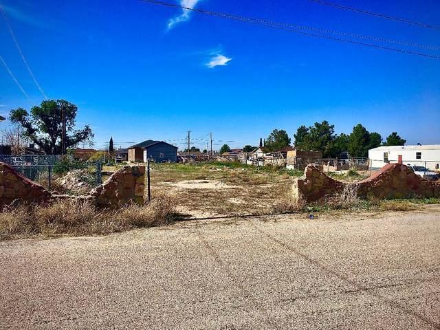 191 Lake Seminole, Horizon City, TX 79928 (MLS #823248) :: The Purple House Real Estate Group