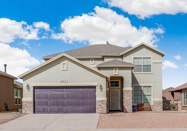 14373 Arabian Point Avenue, El Paso, TX 79938 (MLS #823383) :: The Purple House Real Estate Group