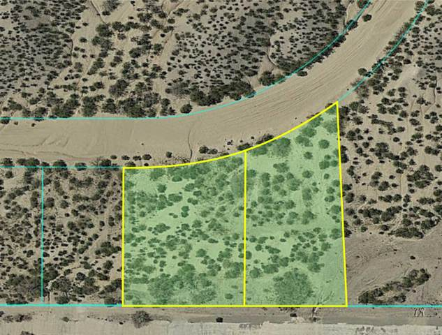 4250 Camino Coyote Lane, Las Cruces, NM 88011 (MLS #823432) :: Jackie Stevens Real Estate Group brokered by eXp Realty