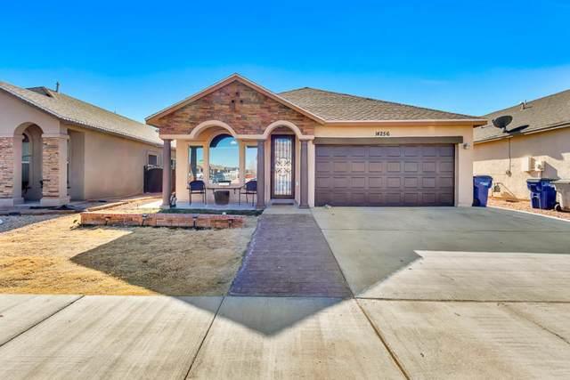 14256 John Scagno, El Paso, TX 79938 (MLS #823459) :: The Purple House Real Estate Group