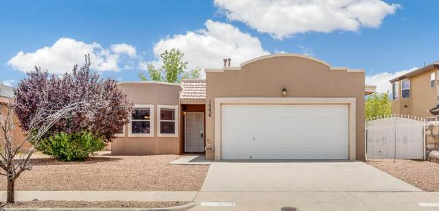 14236 Desert Sunset Drive, Horizon City, TX 79928 (MLS #823484) :: The Purple House Real Estate Group