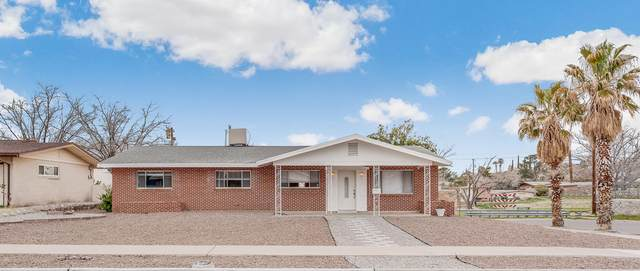 6308 Bel Mar Avenue, El Paso, TX 79912 (MLS #823490) :: The Purple House Real Estate Group