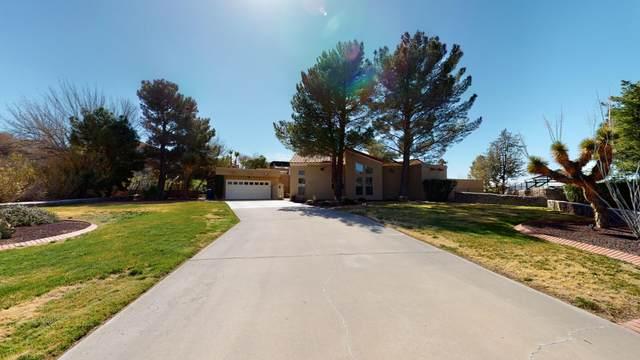 1201 Cerrito Bello Lane, El Paso, TX 79912 (MLS #823497) :: The Purple House Real Estate Group