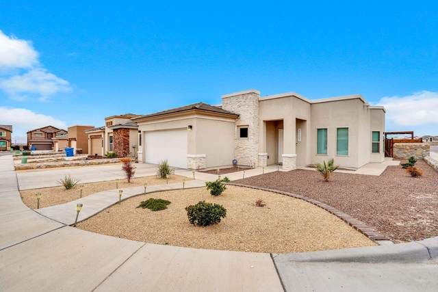 12659 Fair Oaks Ct Court, Horizon City, TX 79928 (MLS #823538) :: The Purple House Real Estate Group