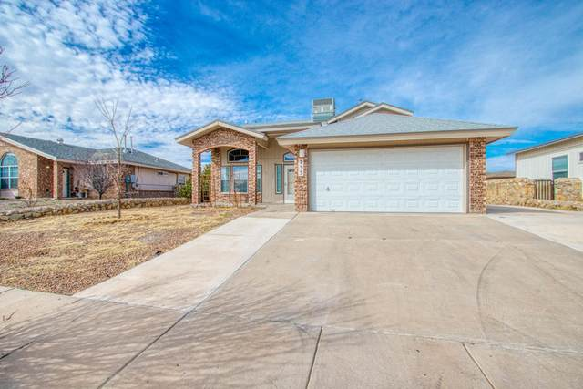733 Maravillas Street, Horizon City, TX 79928 (MLS #823645) :: The Purple House Real Estate Group