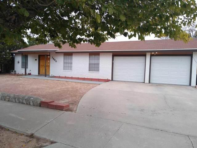 1560 Catham Circle, Horizon City, TX 79928 (MLS #823702) :: The Purple House Real Estate Group
