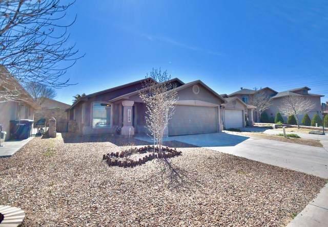 12708 Roberto Nunez Lane, El Paso, TX 79938 (MLS #823776) :: The Purple House Real Estate Group