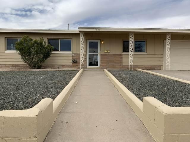 7525 Benson Drive, El Paso, TX 79915 (MLS #823781) :: The Purple House Real Estate Group