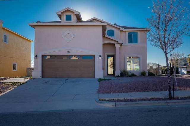 431 Everlook Lane Lane, Horizon City, TX 79928 (MLS #823785) :: The Purple House Real Estate Group