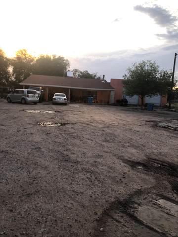 12371 Camino De La Rosa Road, San Elizario, TX 79849 (MLS #823927) :: Preferred Closing Specialists