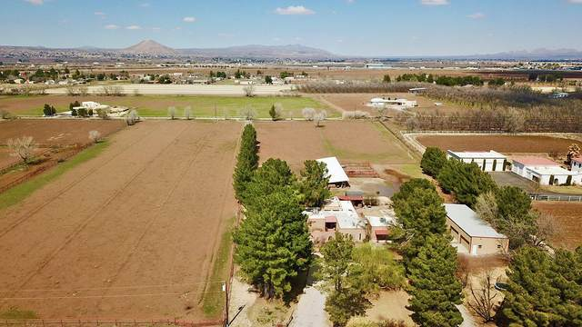 1575 Snow Road, Las Cruces, NM 88005 (MLS #824161) :: The Matt Rice Group
