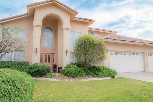 6304 La Posta Drive, El Paso, TX 79912 (MLS #824241) :: Preferred Closing Specialists
