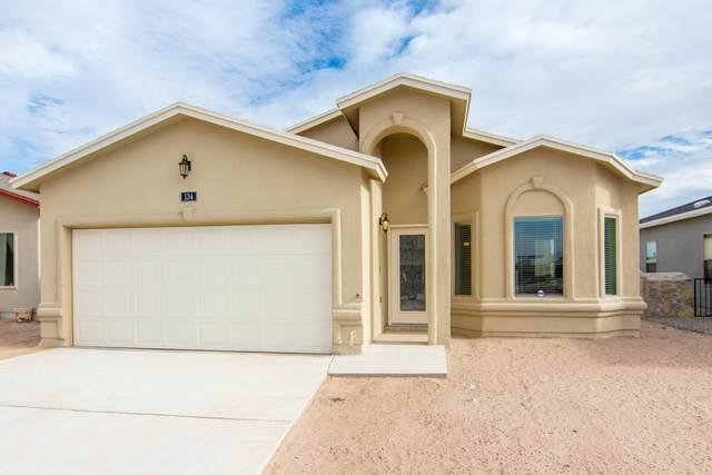 134 Alamito Creek Avenue, Clint, TX 79836 (MLS #824444) :: Preferred Closing Specialists