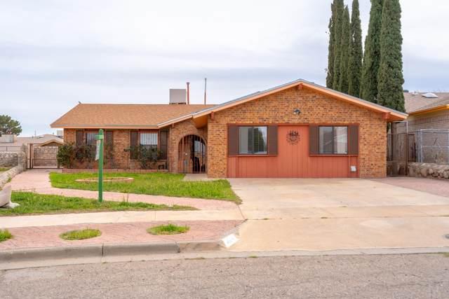 4624 Belinda Ann Lane, El Paso, TX 79924 (MLS #824499) :: Preferred Closing Specialists