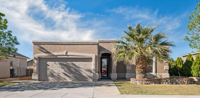14375 Desert Sage Drive, Horizon City, TX 79928 (MLS #825379) :: Preferred Closing Specialists