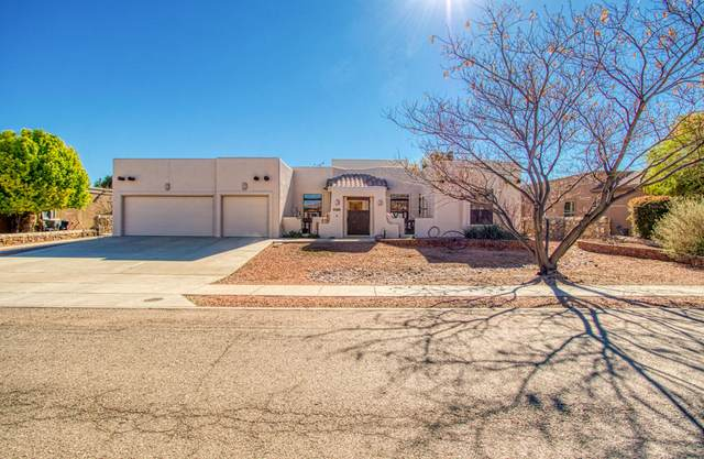 5888 Oscar Perez Avenue, El Paso, TX 79932 (MLS #825515) :: Preferred Closing Specialists