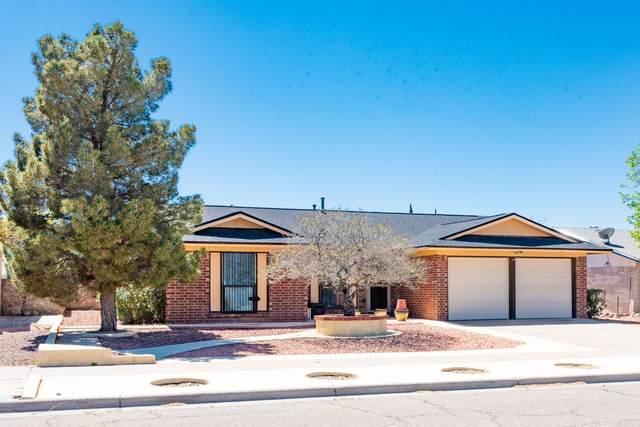 11344 Jack Cupit Lane, El Paso, TX 79936 (MLS #825600) :: The Purple House Real Estate Group