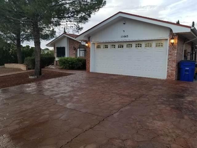 11445 Lake Ozarks Drive, El Paso, TX 79936 (MLS #825610) :: The Purple House Real Estate Group