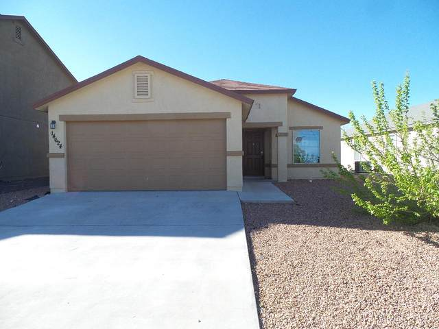 14624 Friesian Trail, El Paso, TX 79938 (MLS #825625) :: Mario Ayala Real Estate Group