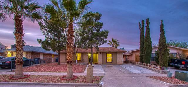 11837 Lewis Lee Court, El Paso, TX 79936 (MLS #825646) :: Mario Ayala Real Estate Group
