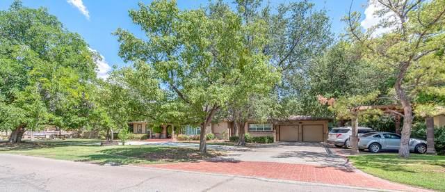 5030 Vista Del Monte Street, El Paso, TX 79922 (MLS #825662) :: Jackie Stevens Real Estate Group brokered by eXp Realty