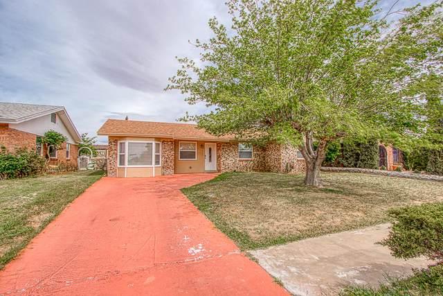 5717 Sweetwater Drive, El Paso, TX 79924 (MLS #825671) :: Jackie Stevens Real Estate Group brokered by eXp Realty