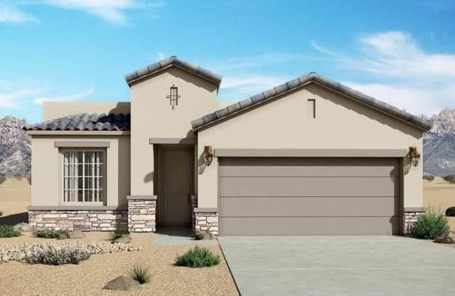 1061 Paseo De Suerte Drive, El Paso, TX 79928 (MLS #825737) :: Mario Ayala Real Estate Group
