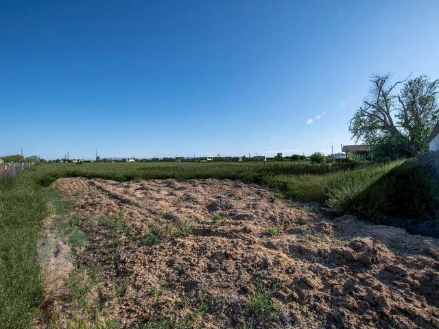 1067 Sanchez Road, San Elizario, TX 79849 (MLS #825826) :: Preferred Closing Specialists