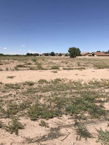 0 Crawford Road, Santa Teresa, NM 88008 (MLS #825891) :: Preferred Closing Specialists
