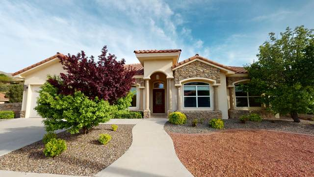 6256 Wildwood Court, El Paso, TX 79912 (MLS #826182) :: Preferred Closing Specialists