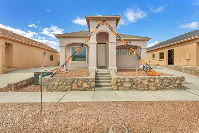 14368 Tobe Davis Drive, Horizon City, TX 79928 (MLS #826268) :: Mario Ayala Real Estate Group