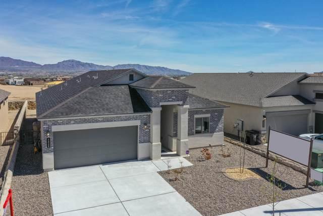 811 Nutmeg Park Street, Sunland Park, NM 88063 (MLS #826289) :: The Purple House Real Estate Group