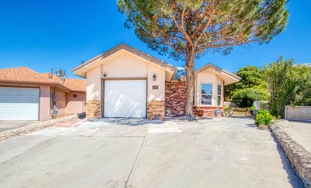817 Porras Drive, El Paso, TX 79912 (MLS #826478) :: Preferred Closing Specialists