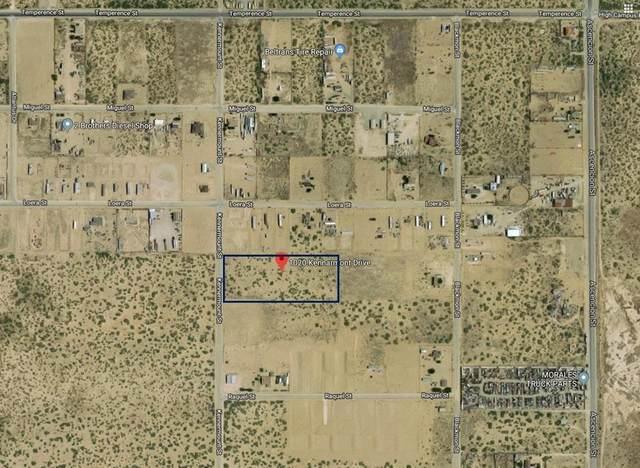 1020 Kennarmont Drive, El Paso, TX 79928 (MLS #826785) :: The Matt Rice Group