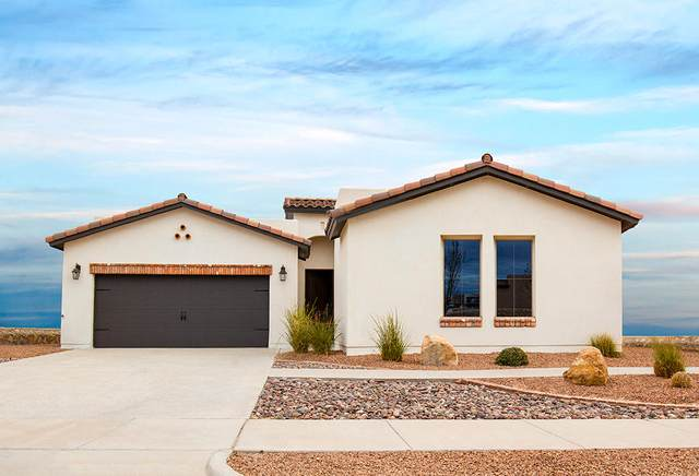 12793 Indian Canyon Drive, El Paso, TX 79928 (MLS #826884) :: The Matt Rice Group
